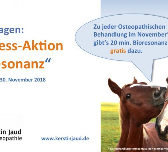 Bioresonanz im November